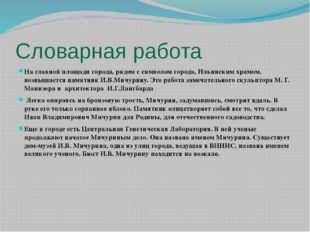 Словарная работа На главной площади города, рядом с символом города, Ильински