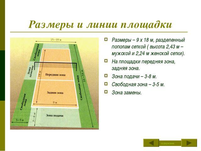 Размеры и линии площадки Размеры – 9 х 18 м, разделенный пополам сеткой ( выс...
