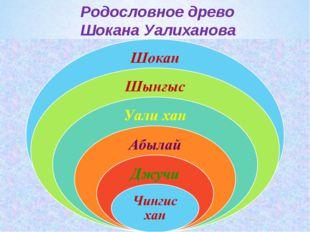 Родословное древо Шокана Уалиханова