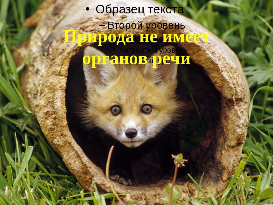 Природа не имеет органов речи