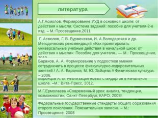 Воронцов А. Б. Реализация новых стандартов в начальной школе. –М.: Вита-Пресс