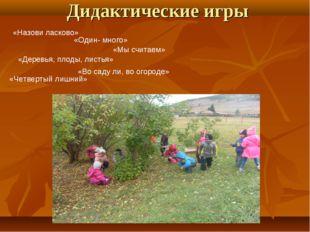 Дидактические игры «Назови ласково» «Один- много» «Мы считаем» «Деревья, плод