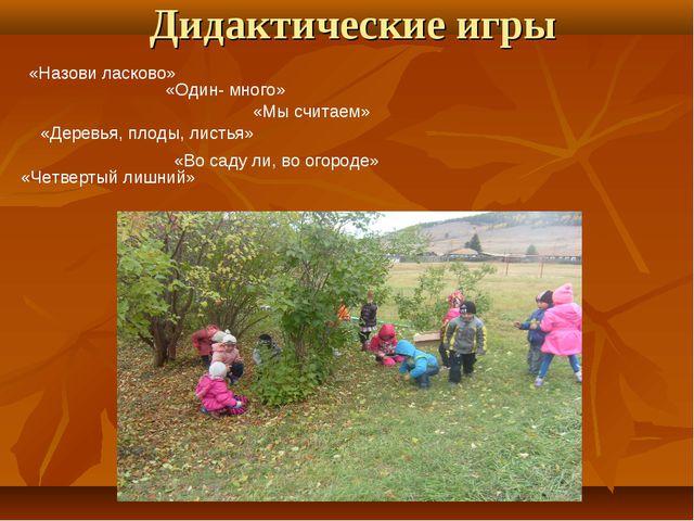 Дидактические игры «Назови ласково» «Один- много» «Мы считаем» «Деревья, плод...