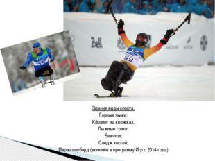 Зимние виды спорта: Горные лыжи; Кёрлинг на колясках. Лыжные гонки; Биатлон;