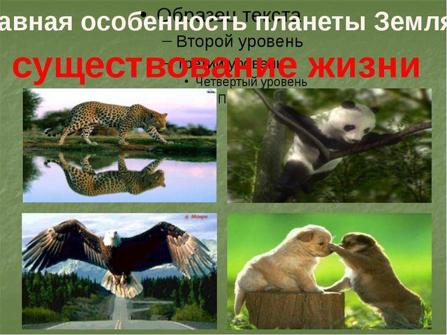 Главная особенность планеты Земля – существование жизни