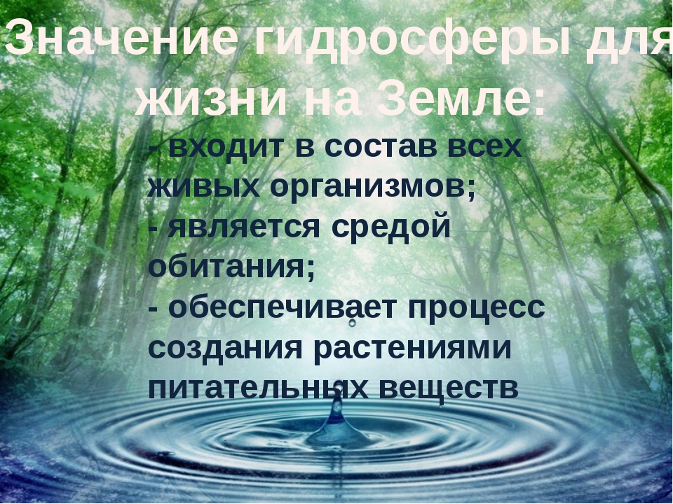 Значение гидросферы для жизни на Земле: - входит в состав всех живых организм...