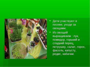 Дети участвуют в посеве, уходе за овощами. Из овощей выращиваем : лук, помидо