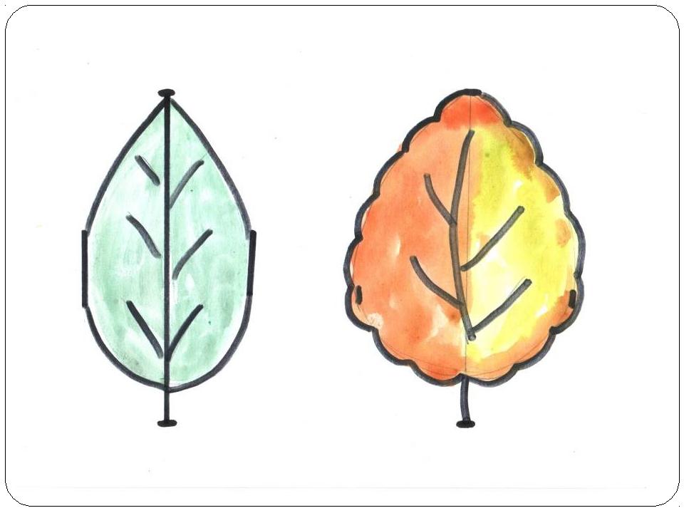 Рисование 1 класс рисуем листья