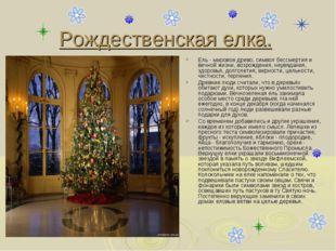 Рождественская елка. Ель - мировое древо, символ бессмертия и вечной жизни, в
