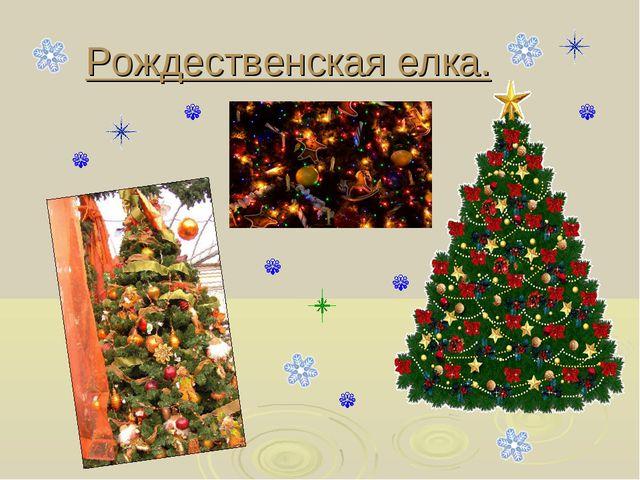 Рождественская елка.