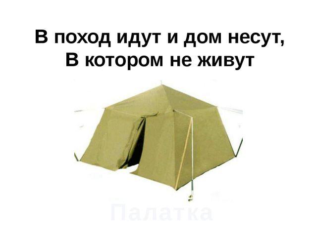 В поход идут и дом несут, В котором не живут Палатка