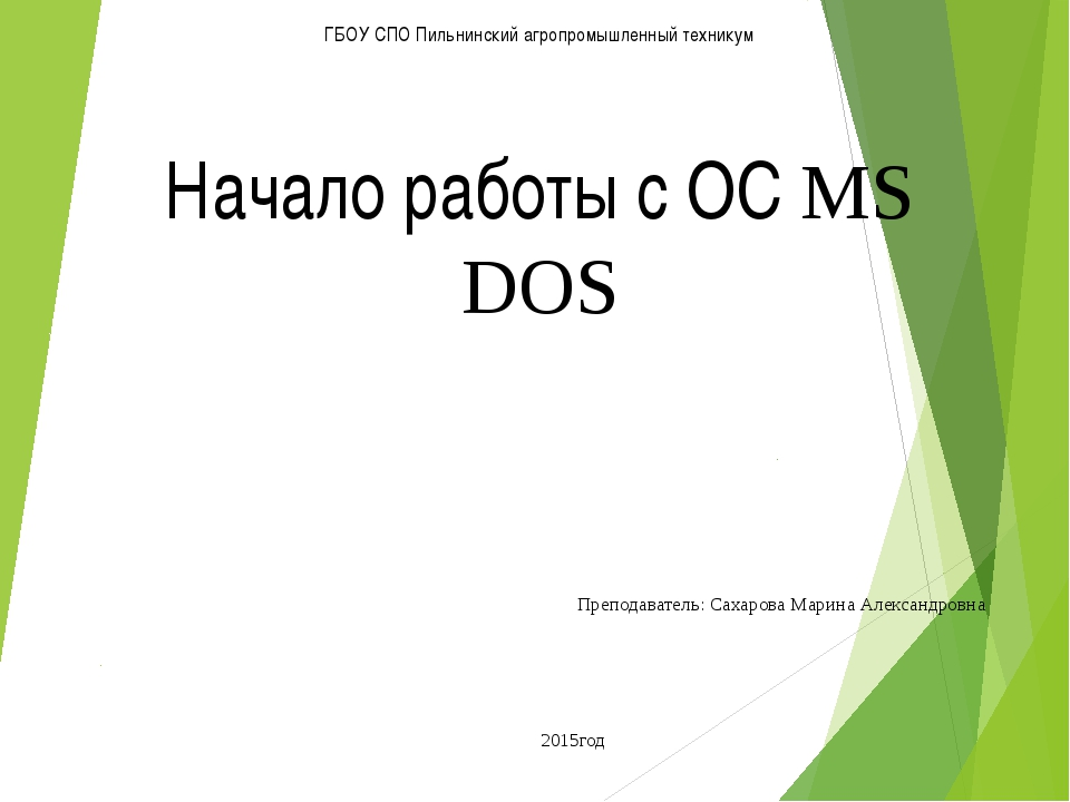 ГБОУ СПО Пильнинский агропромышленный техникум Начало работы с ОС MS DOS Преп...