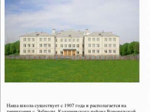 Наша школа существует с 1907 года и располагается на территории с. Заброды Ка