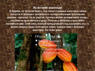 Из истории шоколада В Африке, на Золотом берегу, под тенью огромных кокосовых