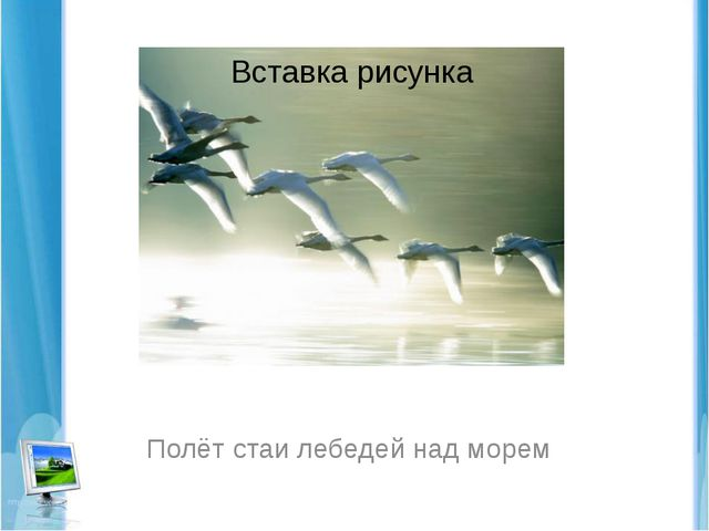 Полёт стаи лебедей над морем