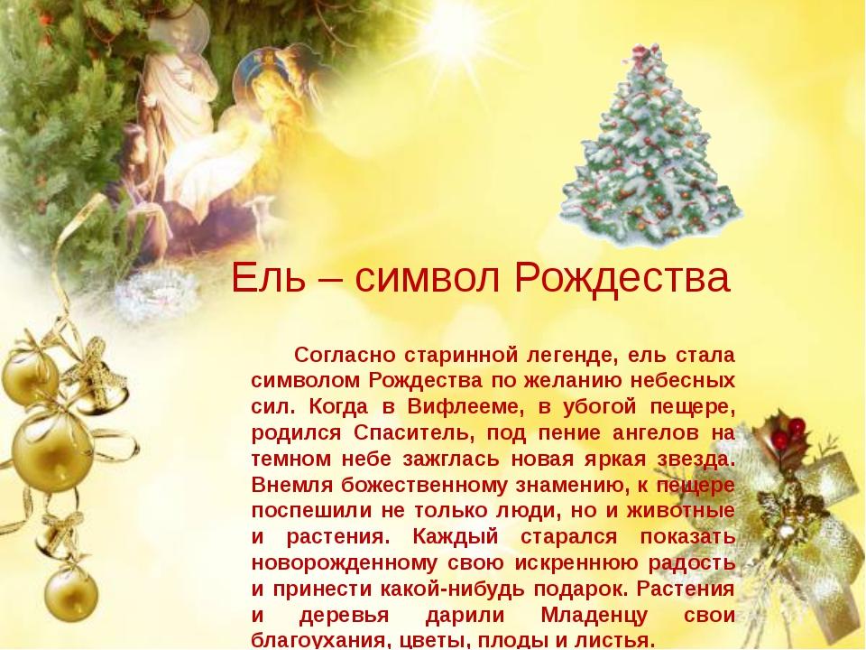 Ель – символ Рождества Согласно старинной легенде, ель стала символом Рождес...