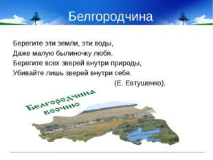 Белгородчина Берегите эти земли, эти воды, Даже малую былиночку любя. Берегит