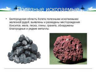 Полезные ископаемые Белгородская область богата полезными ископаемыми: железн