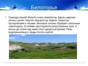 Белогорье Природа нашей области очень живописна. Вдоль широких речных долин т