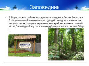 Заповедник В Борисовском районе находится заповедник «Лес на Ворскле». Этот у