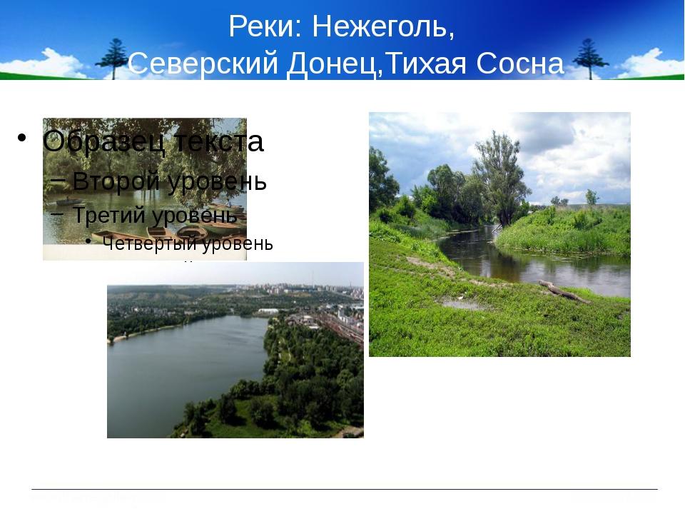 Реки: Нежеголь, Северский Донец,Тихая Сосна