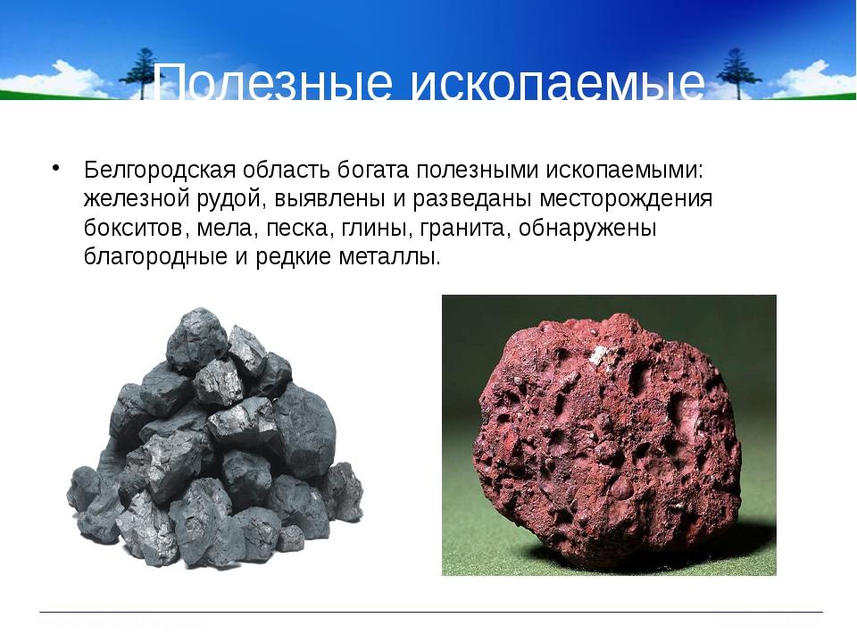 Полезные ископаемые Белгородская область богата полезными ископаемыми: железн...