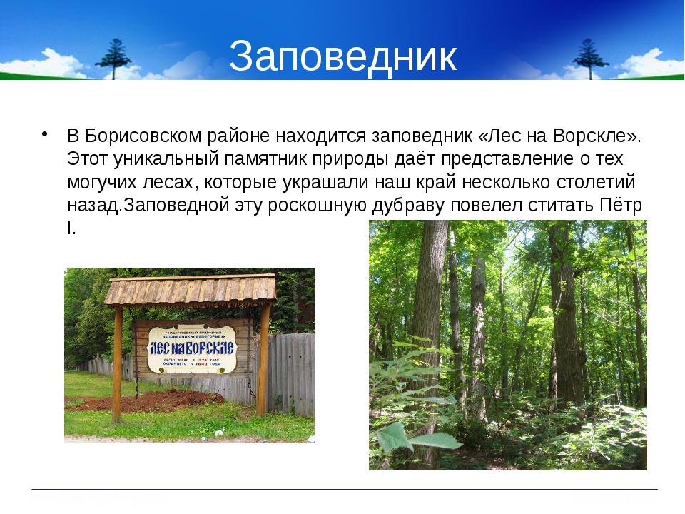 Заповедник В Борисовском районе находится заповедник «Лес на Ворскле». Этот у...
