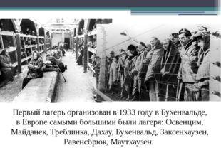 Первый лагерь организован в 1933 году в Бухенвальде, в Европе самыми большими