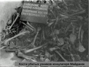 Кости убитых узников концлагеря Майданек