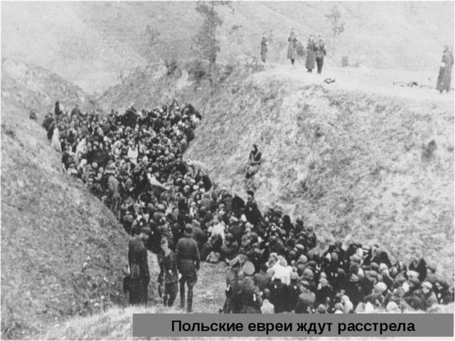 Польские евреи ждут расстрела