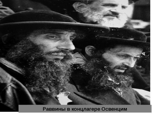 Раввины в концлагере Освенцим