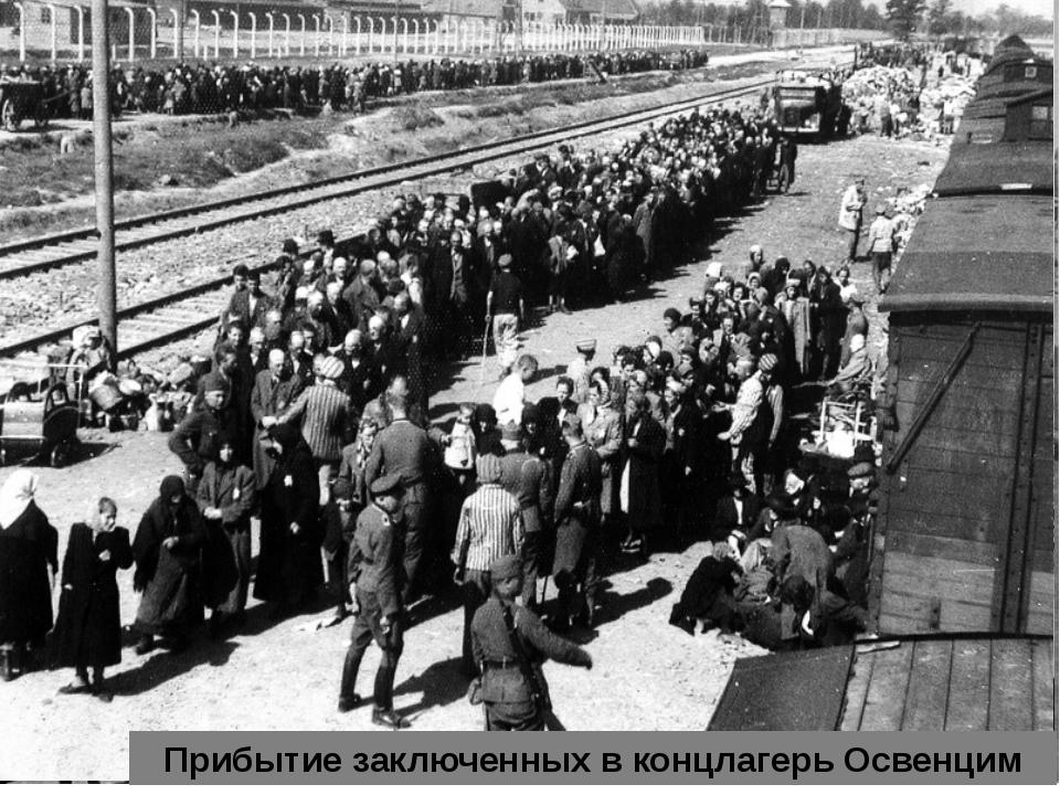 Прибытие заключенных в концлагерь Освенцим