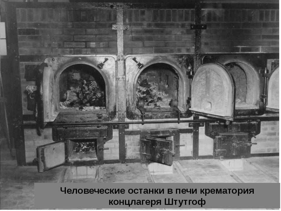 Человеческие останки в печи крематория концлагеря Штутгоф