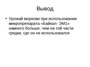 Вывод Урожай моркови при использовании микропрепарата «Байкал- ЭМ1» намного б