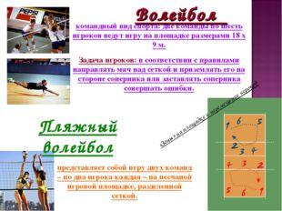 Волейбол командный вид спорта: две команды по шесть игроков ведут игру на пло