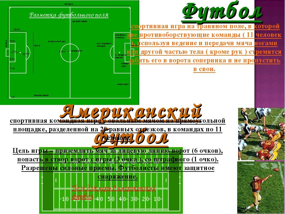 Футбол спортивная игра на травяном поле, в которой две противоборствующие ком...