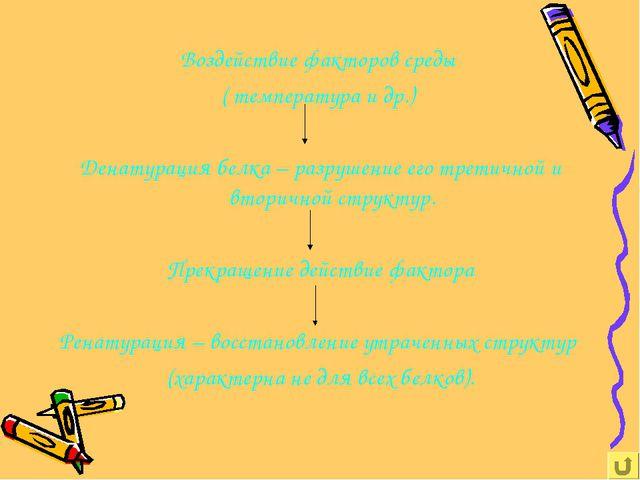 Воздействие факторов среды ( температура и др.) Денатурация белка – разрушени...