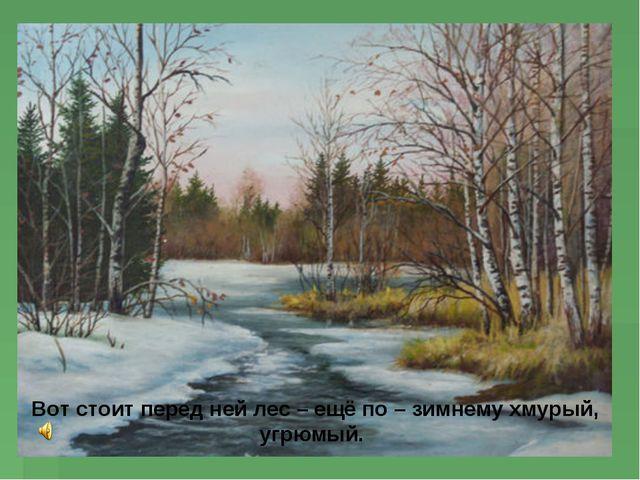 Вот стоит перед ней лес – ещё по – зимнему хмурый, угрюмый.