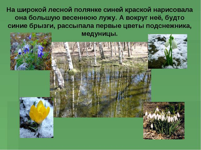 На широкой лесной полянке синей краской нарисовала она большую весеннюю лужу....