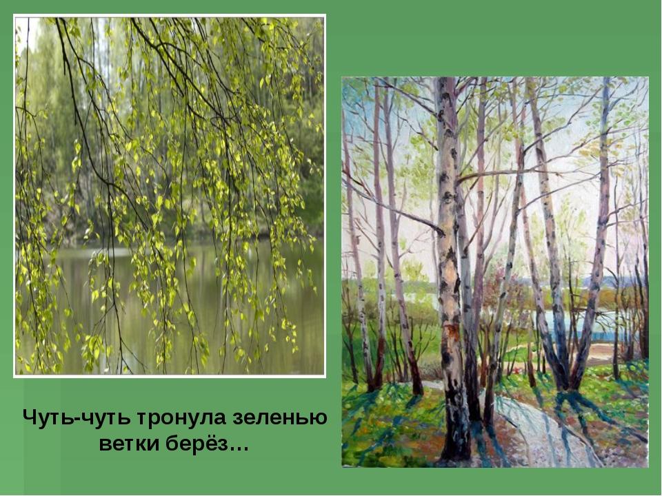 Чуть-чуть тронула зеленью ветки берёз…