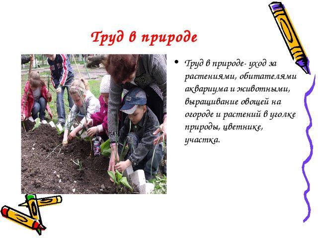 Труд в природе Труд в природе- уход за растениями, обитателями аквариума и жи...