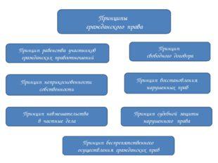 Принципы гражданского права Принцип равенства участников гражданских правоот
