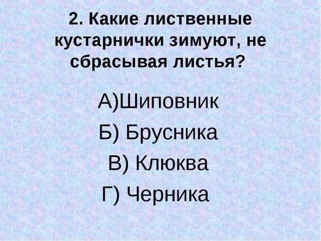 2. Какие лиственные кустарнички зимуют, не сбрасывая листья? А)Шиповник Б) Бр...