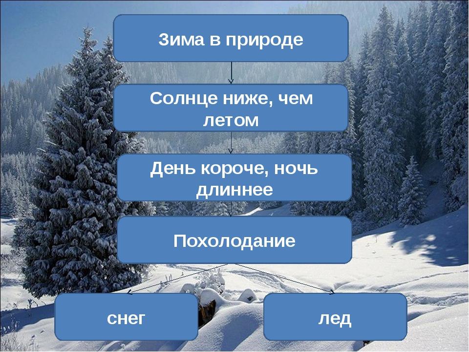 Зима в природе Солнце ниже, чем летом День короче, ночь длиннее Похолодание с...