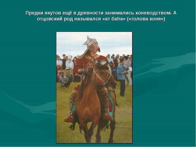 Предки якутов ещё в древности занимались коневодством. А отцовский род называ...