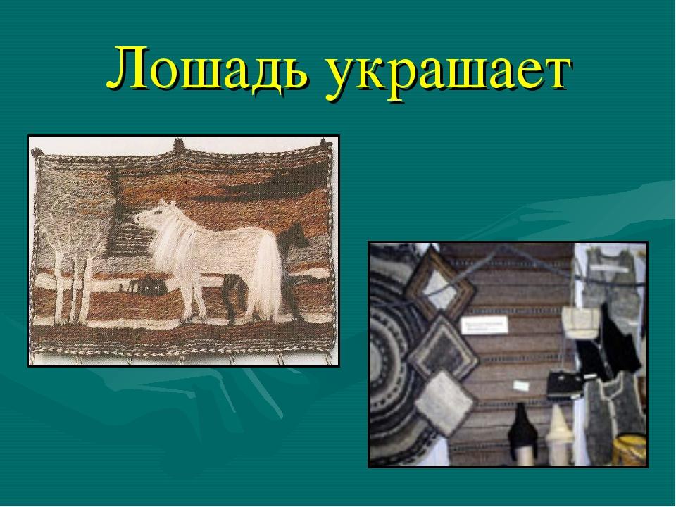 Лошадь украшает