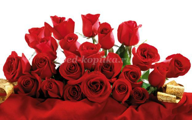 http://ped-kopilka.ru/upload/blogs/32883_4533f2ee491ed99c96eb7f95062ec83c.jpg.jpg