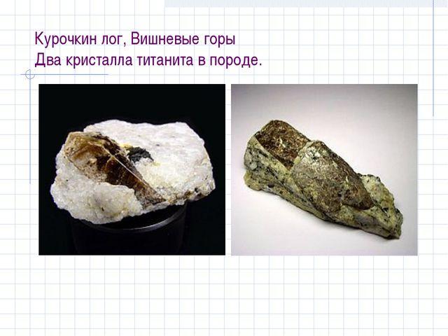 Курочкин лог, Вишневые горы Два кристалла титанита в породе.