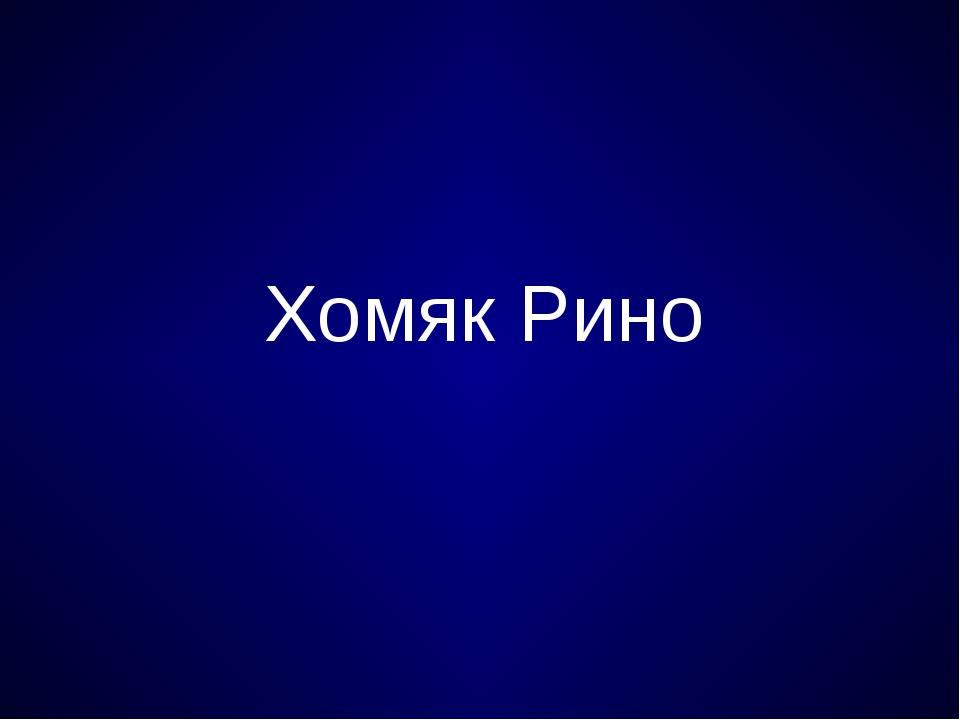 Хомяк Рино
