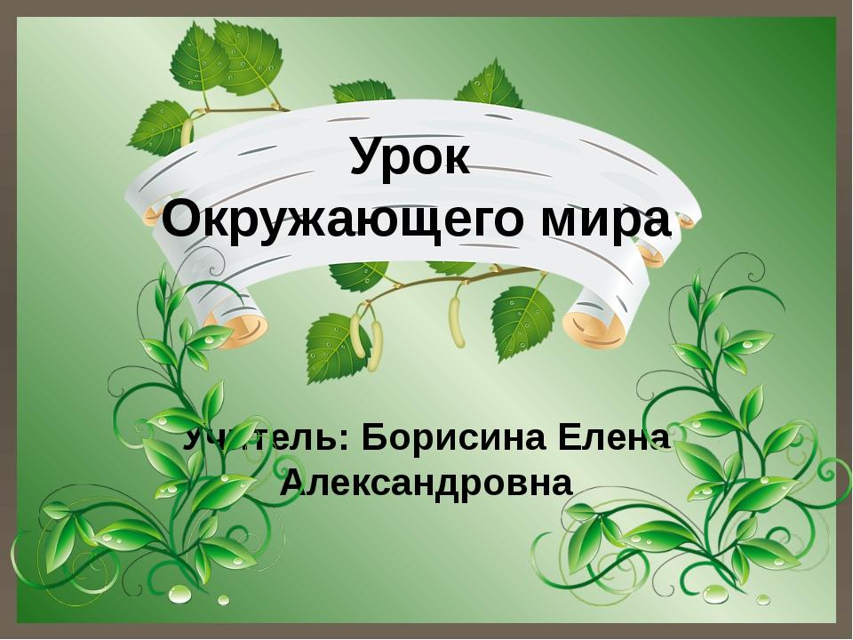 Урок Окружающего мира Учитель: Борисина Елена Александровна